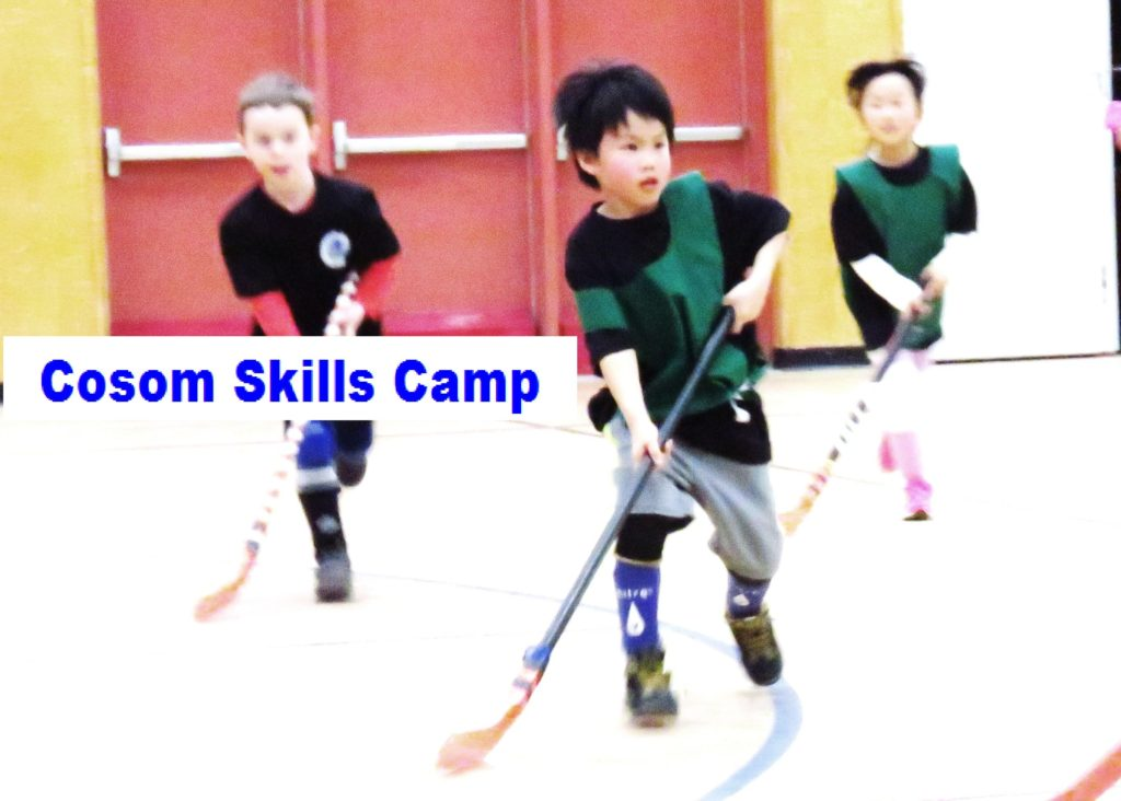 cosom-skills-camp